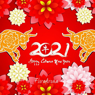 2021年新年快樂 芳旅邀您一同勇往犇前!Happy New Year!