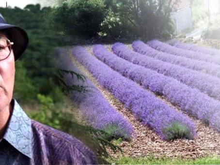 【大師帶路】皮耶.法蘭貢芳療大師帶您深度芳香遊學11天-探訪法國西南古老薰衣草的秘密莊園!