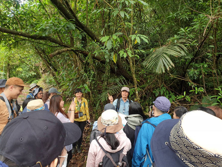 【秘境旅行】 跟著植物獵人洪信介老師 一遊三貂嶺秘境森林 認識植物的千姿百態 跟著植物去旅行