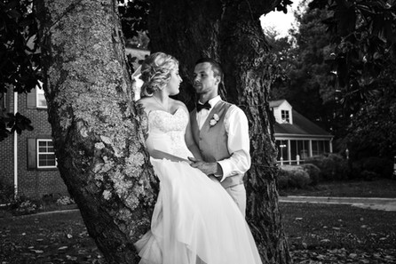 Bride sitting in the tree Chateau Vie