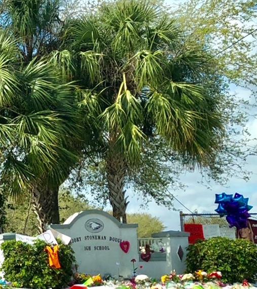 Parkland, Florida. (photo credit: Buffy Beaudoin-Schwartz)
