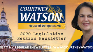 Subscribe to my 2020 Legislative Session eNewsletter!