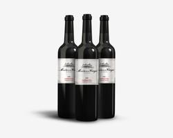 Masia de la Vinya Logo and Wine Label Design