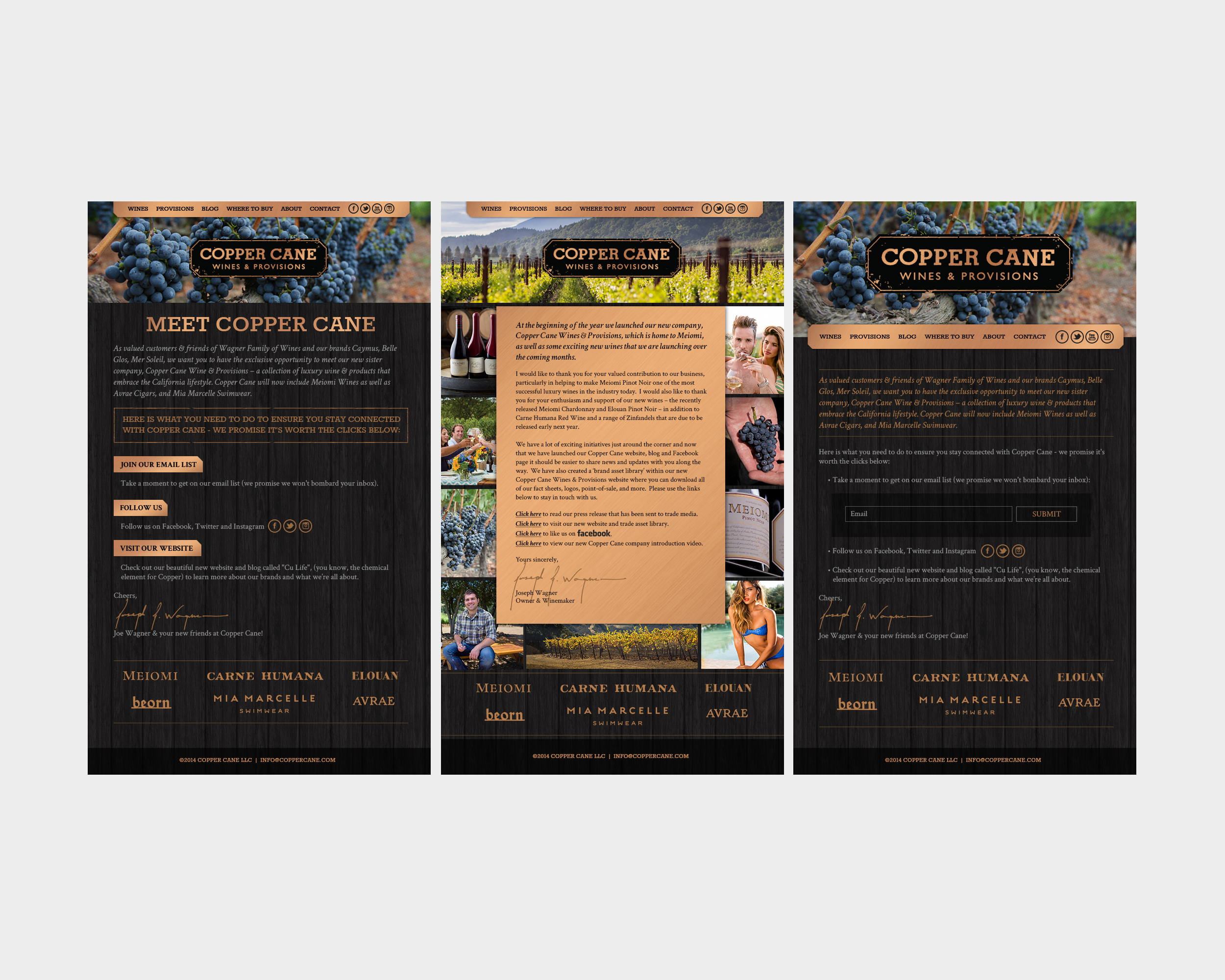 Copper Cane Email Blast Designs