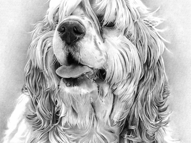 Max Portrait in Graphite