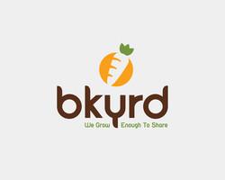 bkyrd Logo Variation