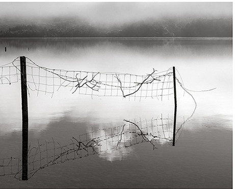"""The Loch Where We Played"" by Roddy MacInnes"