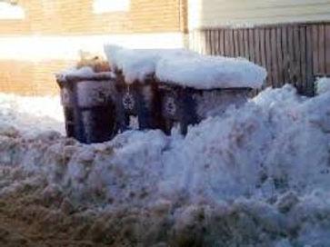 snowytoter.jpg