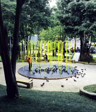 KUSLUK | BIRDSCAPE