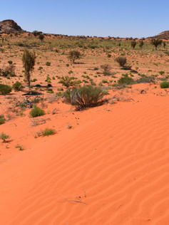 Red Sands and Rocky Outcrops