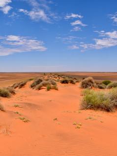 Simspson Desert Sand Dune
