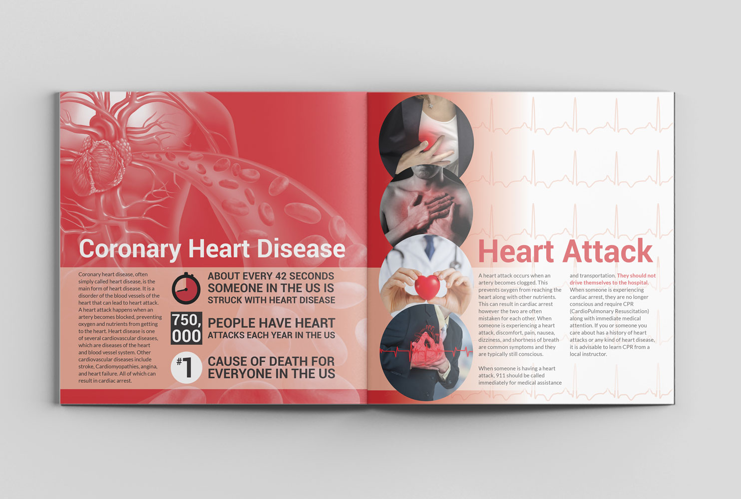 Heart Disease & You Spread