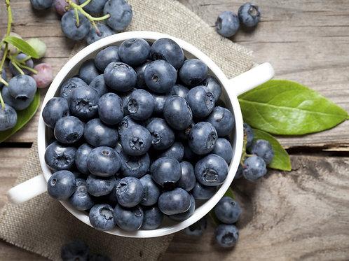 Organic Blueberries, Fresh