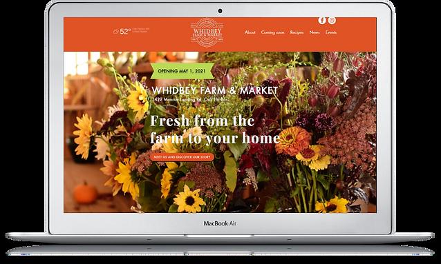 Wix Websites.png