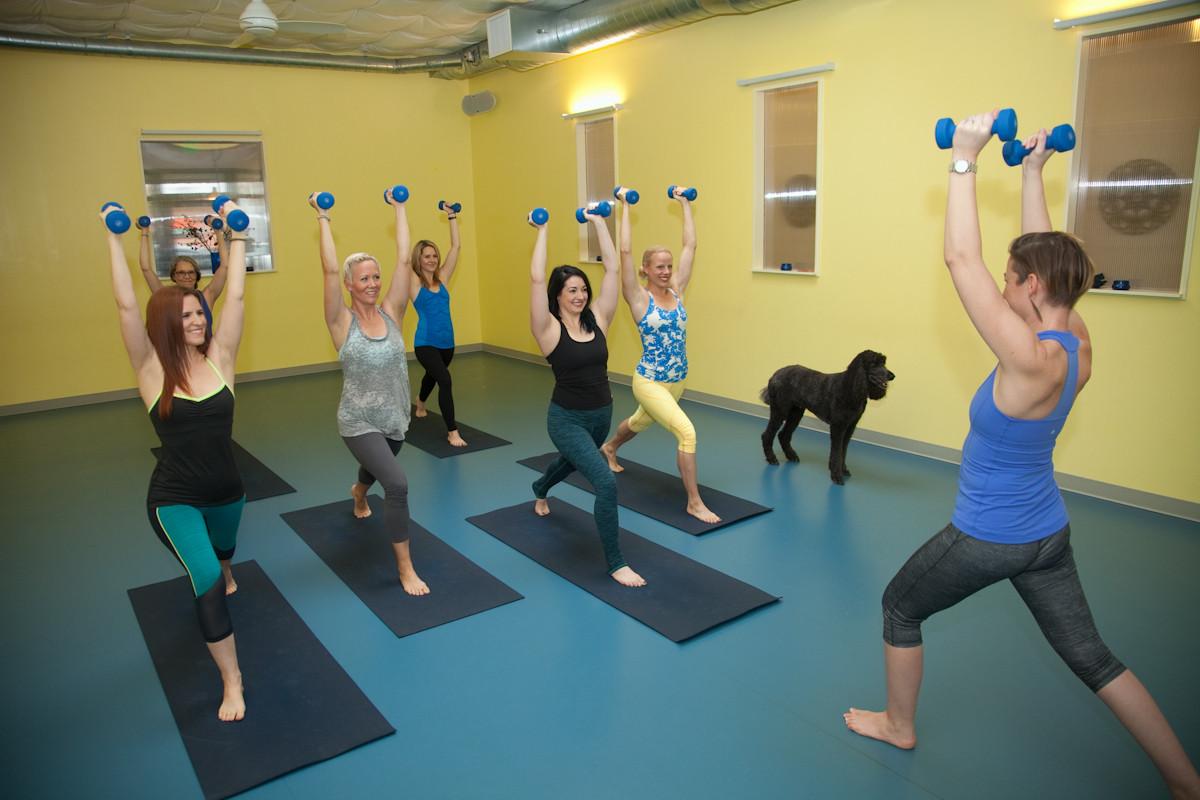West Seattle Yoga | West Seattle | Spira Power Yoga