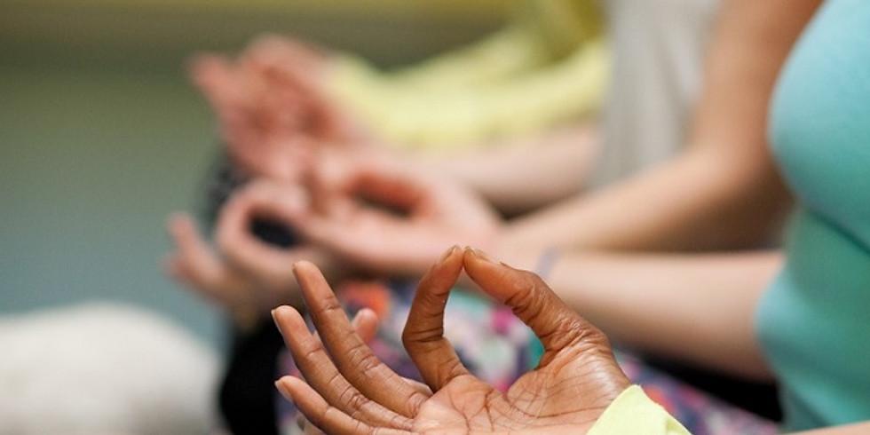 Pranayama Essentials for Yoga Teachers & Students