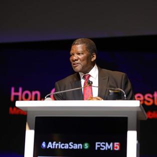FSM5 Cape Town (12).JPG