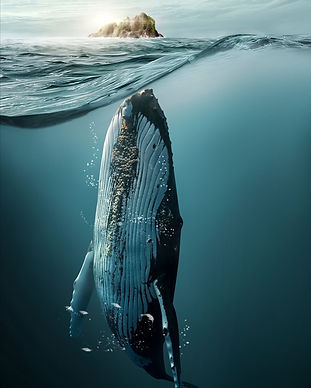 digital-art-whales-composition-nature-an