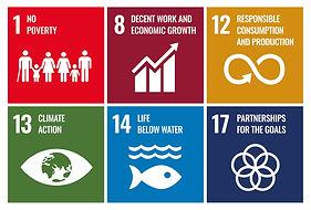 UN-goals.jpg