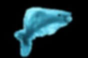 01-fish-1.png