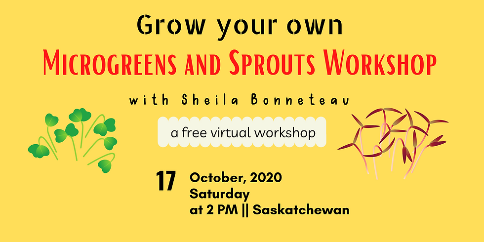 Microgreens and Sprouts Growing Workshop