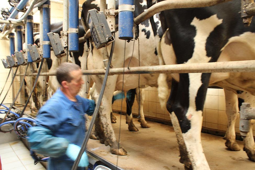 2016-06-ferme Dourcy-13.JPG