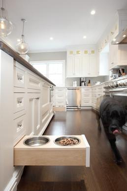 A Pet Friendly Home