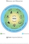 Health Wheel