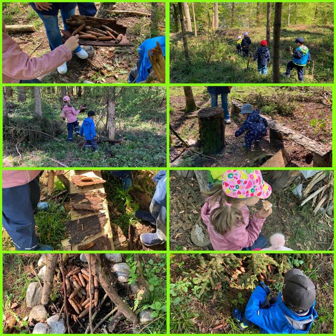Die Waldsaison im Esslinäscht hat begonnen!
