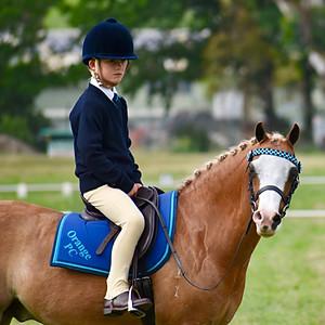 Orange Pony Club Gymkhana