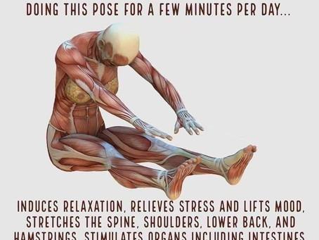 Physical Intelligence Challenge