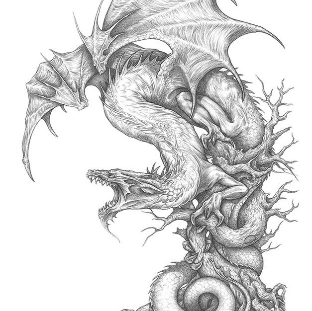 Un Dragón para San Jorge