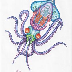 Trilobilibelu Calamaris