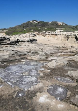 Natural Sea Salt.jpg