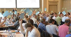 delegiertenversammlung, smz oberwallis