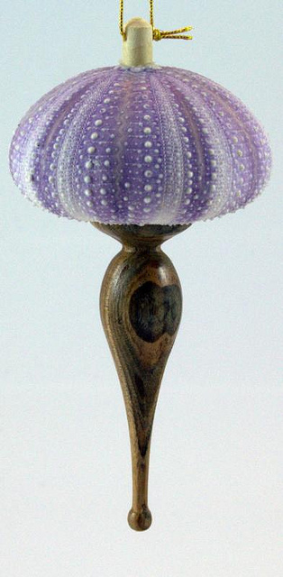 purple urchin ornament_6100529669_m.jpg