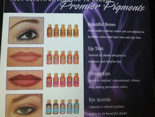 At The Fine Arts of Beauty we only use Premier Pigments! Here's why: