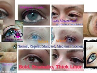 Advanced Eyeliner Training for Certified Permanent Makeup Artists! @ The Fine Arts of Beauty