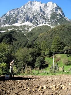 Bild6Marina bei Kartoffelernte vor Creta Grauzaria