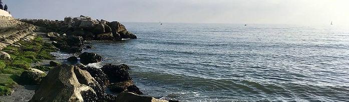 Bild Grado nebel.jpg