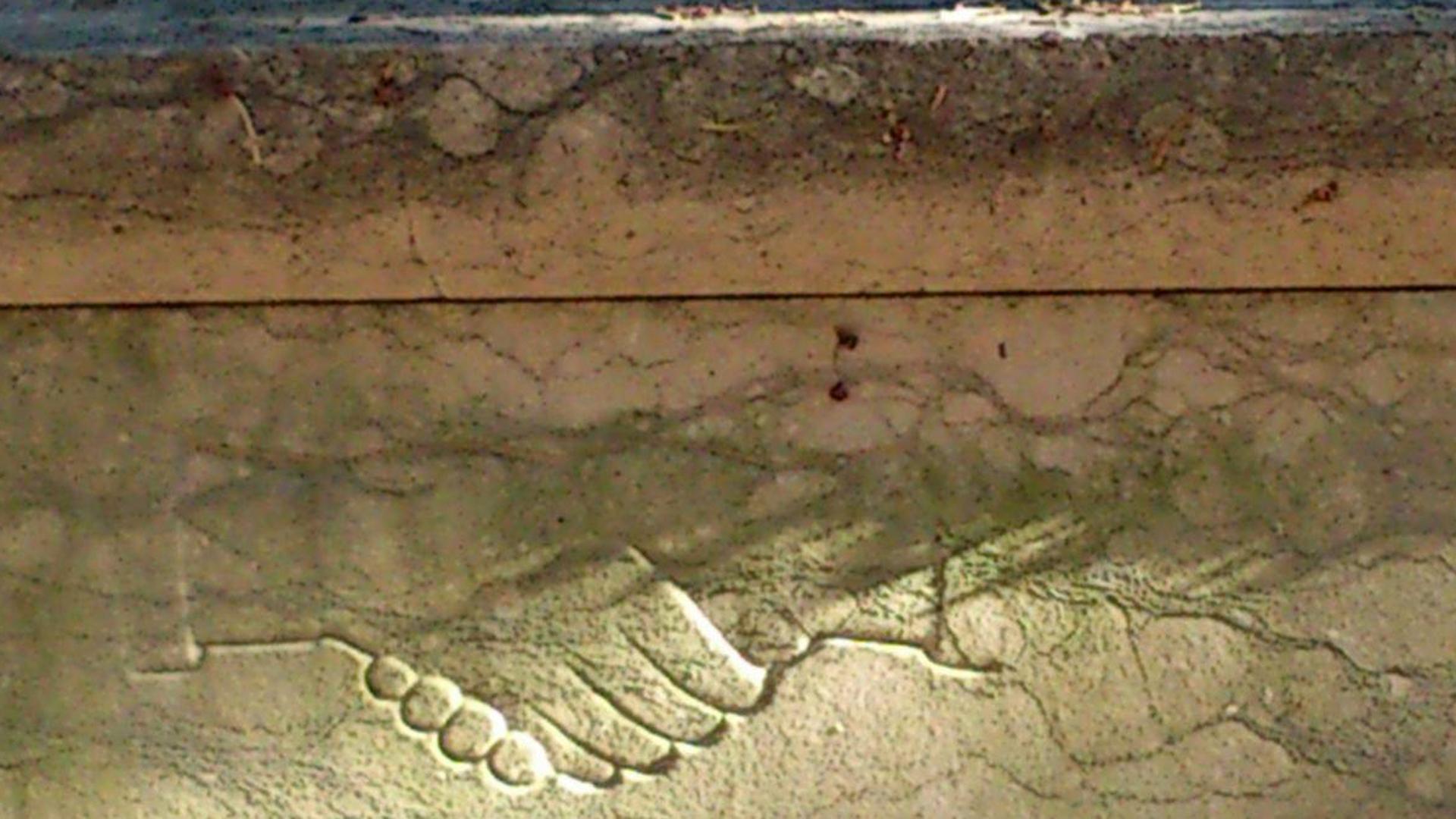 Friedhof_Detail_Trieste_ph_Alessandra_Fogar