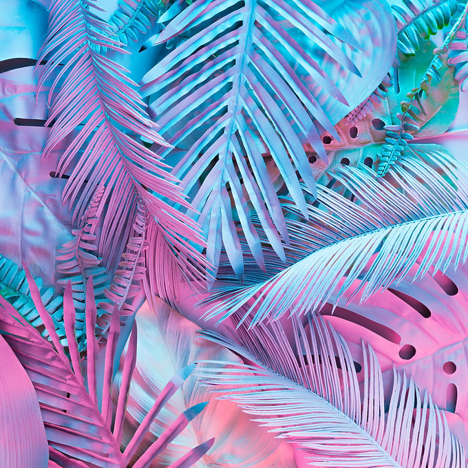 Tropical and palm leaves in vibrant bold