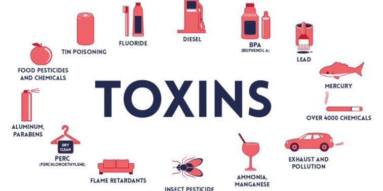 Toxin-630x315.jpg