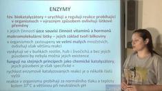 Bílkoviny a enzymy