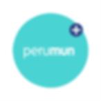 Logotipo_perumun_web.png