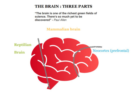 BOSS YOUR BRAIN: Learn to conquer your fears and reach your potential.