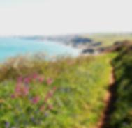 coastal views t.jpg