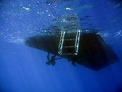 Kohala Diver from underwater
