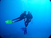 Diving with Kohala Divers