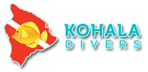 Kohala Divers, the best diving in Hawaii